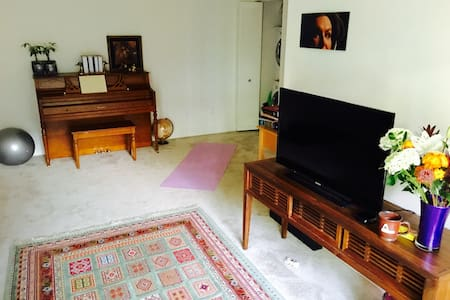 1BD Apartment, Full bath, Gym,Pool, Piano - Vienna - Appartamento
