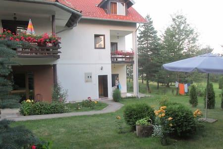 Apartmants Bojana - Apartment