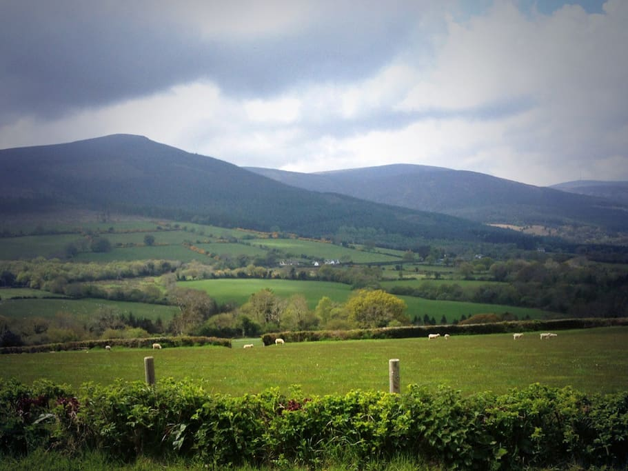 Countryside 2 bed flat Enniskerry
