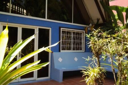 Casa Mono Coco, Tree-top Living!