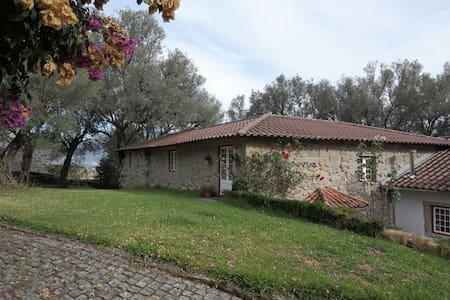Quinta do Galgo (Casa da Adega) - Casa