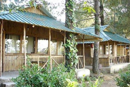 Comfortable | Adventure| Hut with BF & dinner. - Shoghi - Choza