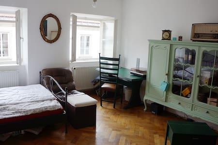 Room in central Munich, Stachus - München - Appartement