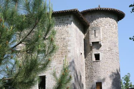 Chambres dans une tour du 13ème - Slott