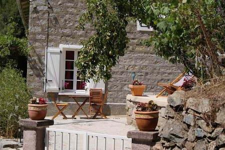 maison dans village a ZEVACO - Zévaco