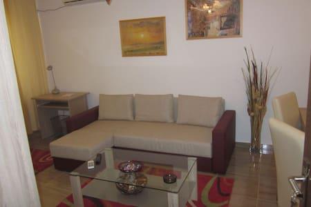 Dorobanti 15 - one bedroom flat - Bucharest - Apartment