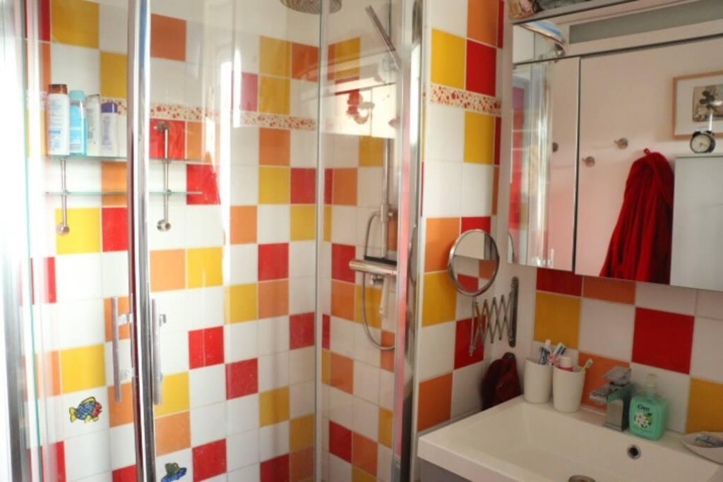 Une salle de douche vitaminée pour toujours avoir le sourire à Reims !-------A vitamin shower room to always have the smile at Rheims.