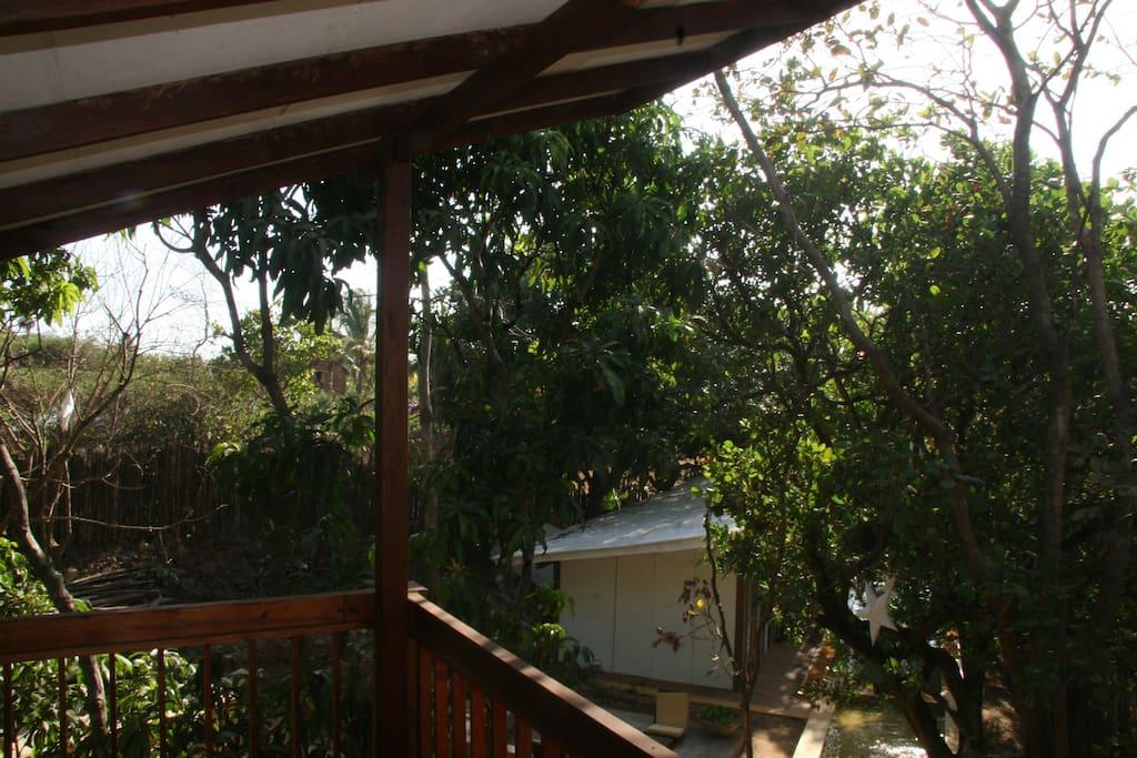 tree top level  bedroom verandah creates treehouse feel