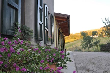 B&B Infratta nei colli romagnoli - Fratta Terme Bertinoro - Bed & Breakfast