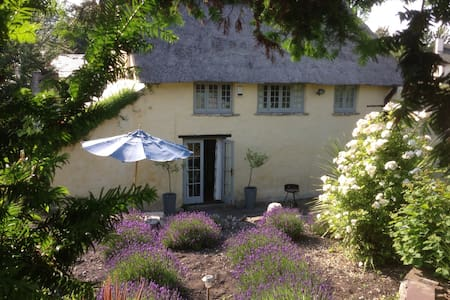 Beautiful 1600s thatched cottage
