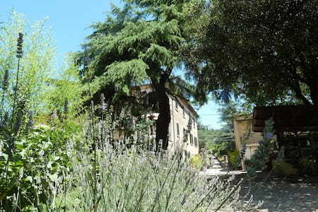 B&B Gabri Tra Toscana e Umbria - Cortona