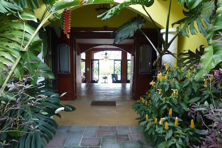 Tropical Mansion With Pool Bar - San Isidro de El General - House