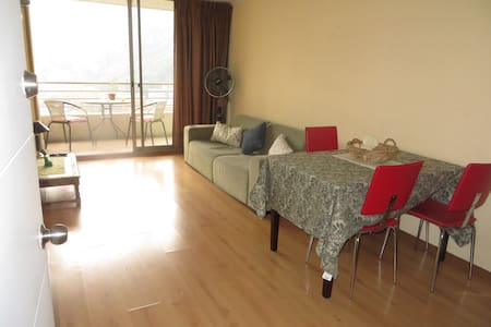 Perfect Central Location w/wifi - Santiago - Apartment