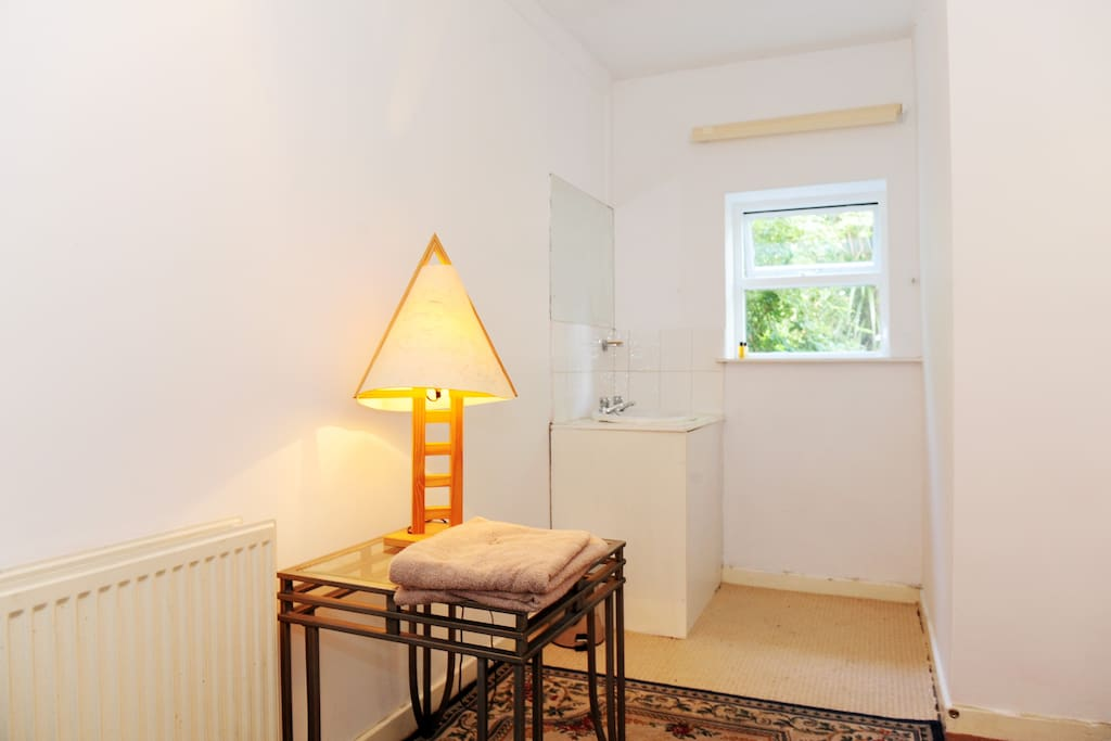 Single room in Victorian Townhouse