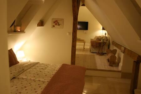 Next to Sensitivity Suite in Castle - Wschowa - Castle
