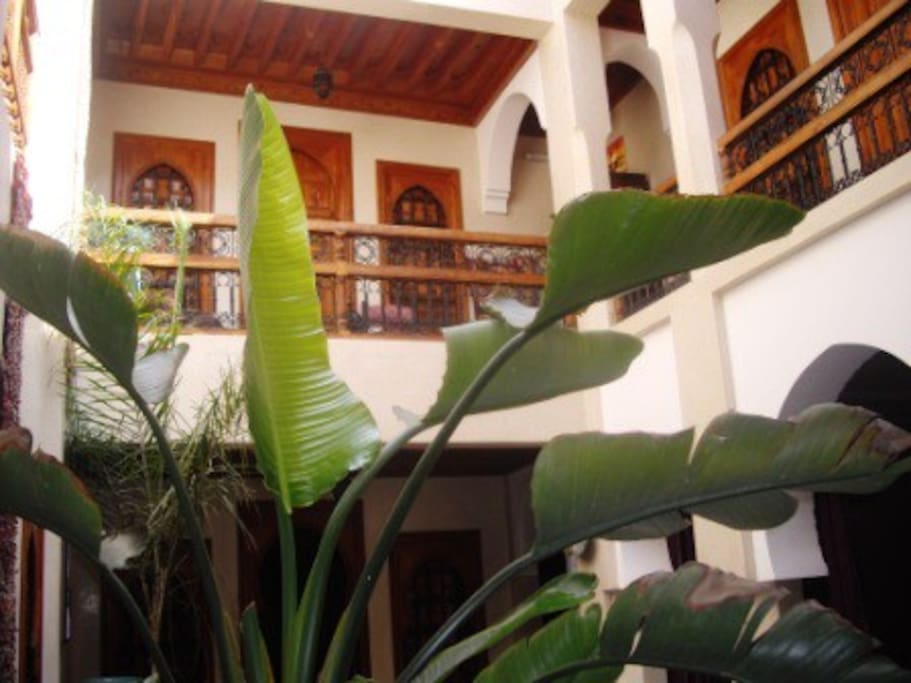 Beautiful Rooms - Riad in Marrakech