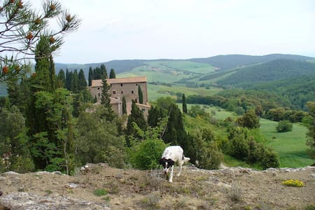 In the heart of Tuscany's most beau - Casole D'elsa, Volterra - Apartment