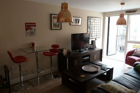 1 bedroomed flat in Brixton