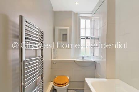 Nice Apartment in Pimlico