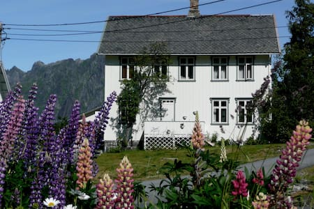 Private single room in Reine - Reine - Bed & Breakfast