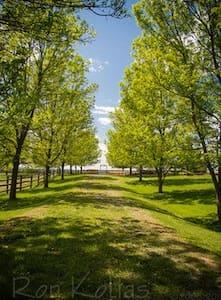 Champlain Valley Alpacas  - Bridport - Cabin