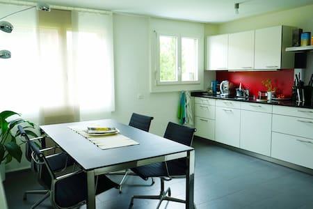 Schöne Wohnung in Cham (Zug) - Cham