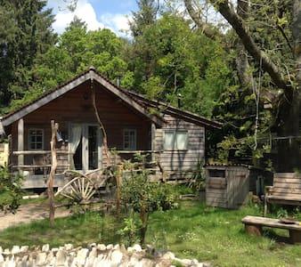 Sika Lodge,Forest eco cabin. 3 night minimum - Wareham - Zomerhuis/Cottage