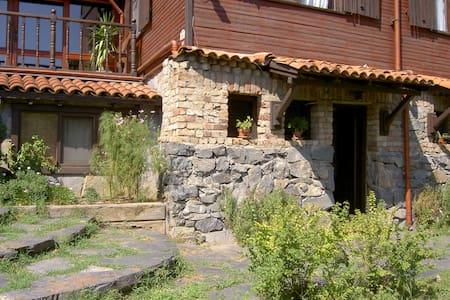 Studio in garden - Casa