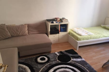 Peaceful, central flat with nice people - Wohnung
