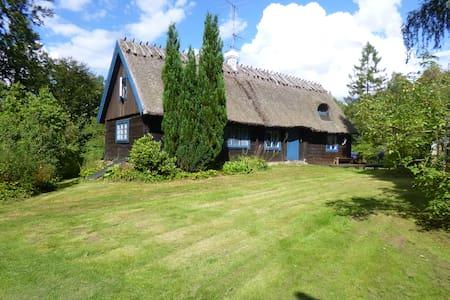 Charming Swedish house near lake - Huis