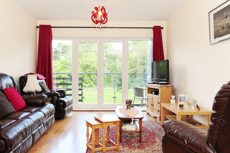 Dub apt near airport M50 DCU City