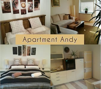 Big apartment with 4 rooms/6 person - Medvode