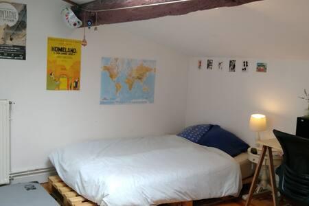 Chambre en grand appartement centre de Bordeaux - Bordeaux - Appartement