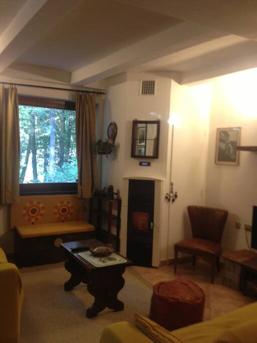 lounge room with pellet stove