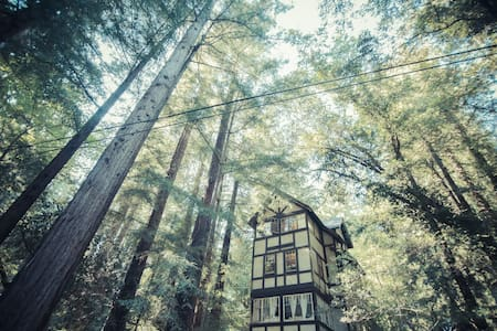 Cozy 1-BD Redwood Treehouse Retreat