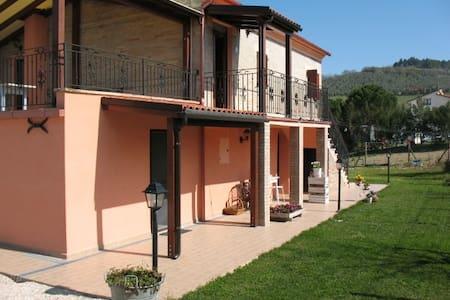 IMA0301 IL BAULE DEI RICORDI - House