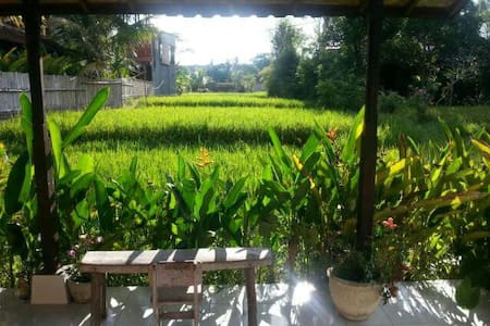 Secret ricefield...Very private