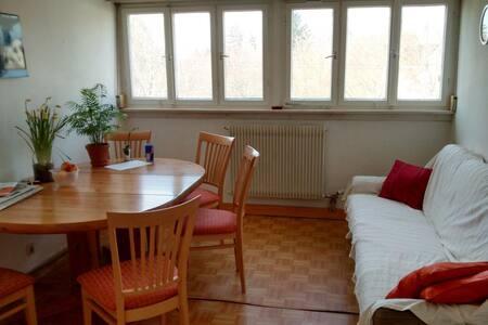 Kleines gemütliches Zimmer im Grünen, stadtnah - Apartament