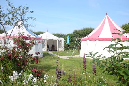 Belle Tents Camping - Camp 3 - Davidstow - Tent