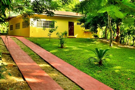 Casa Armenta Eco-Hostel - San Pedro Sula - Bed & Breakfast
