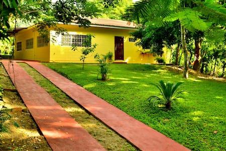 Casa Armenta Eco-Hostel - 圣佩德罗苏拉