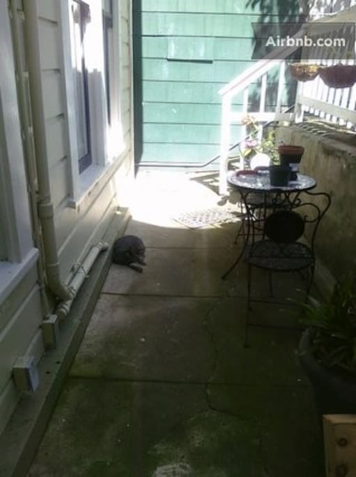 Semi-private back patio perfect for enjoying a drink or breakfast outdoors. Neighbor's friendly cat may drop by.