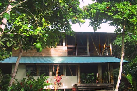 Take a walk on the wild side! This off-grid bamboo house sits on four acres of pristine beachfront  in a small rainforest community surrounded by wildlife. Enjoy one of the most amazing places on earth in rugged luxury and security. Spectacular views