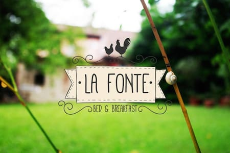 Bed and Breakfast La Fonte - Camera Coccodé - Bed & Breakfast