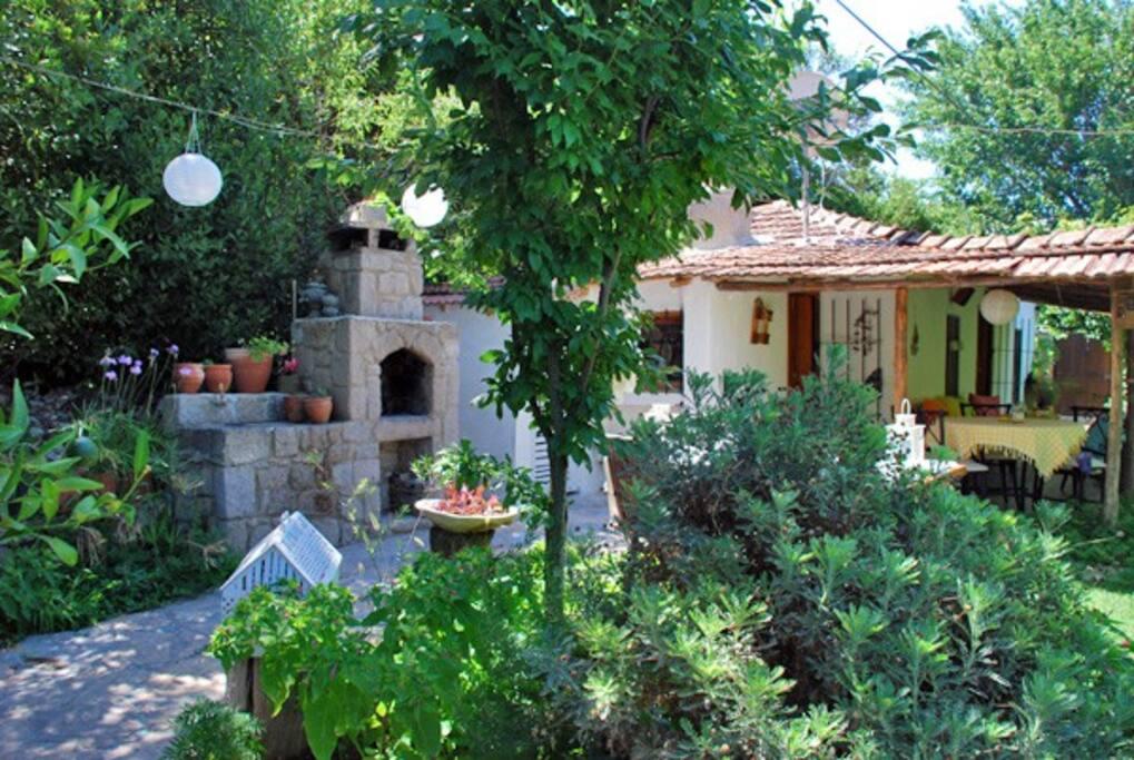 Bodrum Garden Cottage Summer House Villas For Rent In