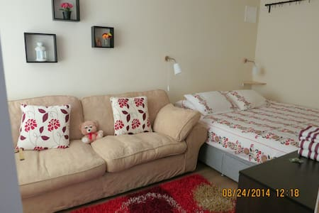 Beautifully Decorated Double Room - House