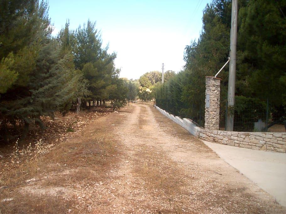 Villa near Castel del Monte, Andria