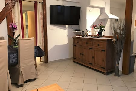 Bel appartement de charme de 70m² - Thannenkirch