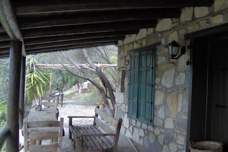 Terra Incognita - Casa de camp