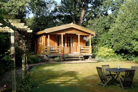 Beautiful lodge in the New Forest - Bungalo